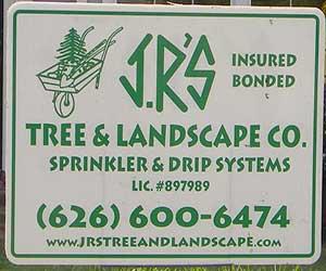 Altadena Tree Service Company