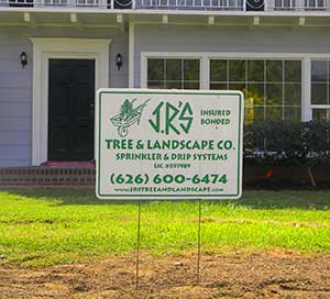 Arcadia tree service and landscape company