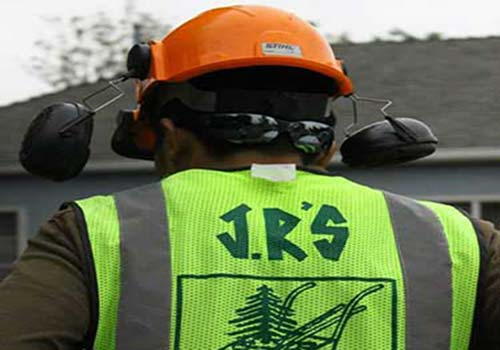 JRS Tree Service and Landscape company in pasadena, CA