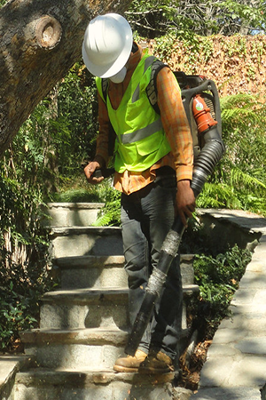 We are Expert and professional Hillside cleanup service providers in Pasadena