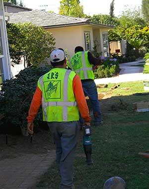 Tree removal service company san marino, california