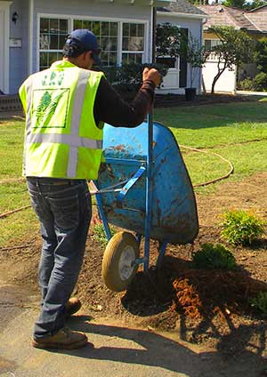 south pasadena tree service company - JR's Tree Service and Landscape