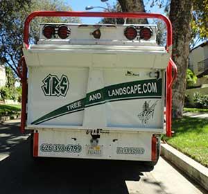 South Pasadena tree service company